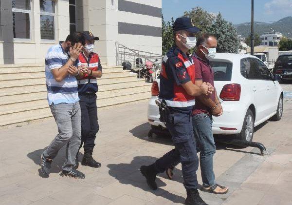 Avokado hırsızları tutuklandı