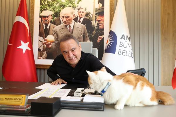Başkan Böcek Hayvanları Koruma Günü'nü Toros'la kutladı