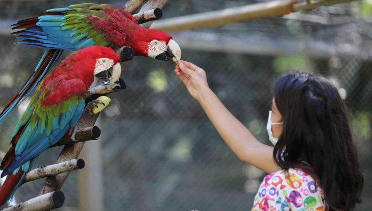 Büyükşehir Belediyesi Hayvanat Bahçesi'nde hedef bir milyon ziyaretçi
