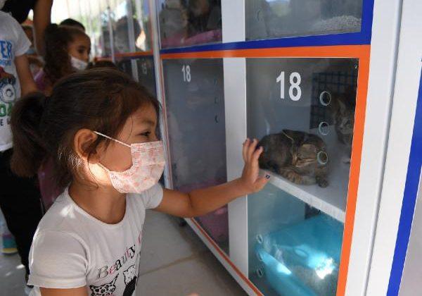 Konyaaltı Belediyesi, minik hayvanseverleri ağırladı