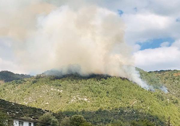 Manavgat'ta orman yangını (1)