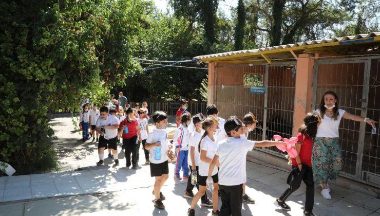 Öğrenciler, Dünya Hayvanları Korumu Gününde sahipsiz hayvanları yalnız bırakmadı