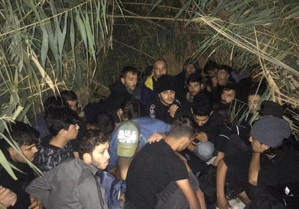 Sazlıklar arasında saklanan 28 kaçak göçmen yakalandı